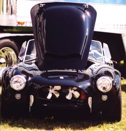 King Cobra - 1966 Shelby Cobra 427 Super Snake (CSX3015 and