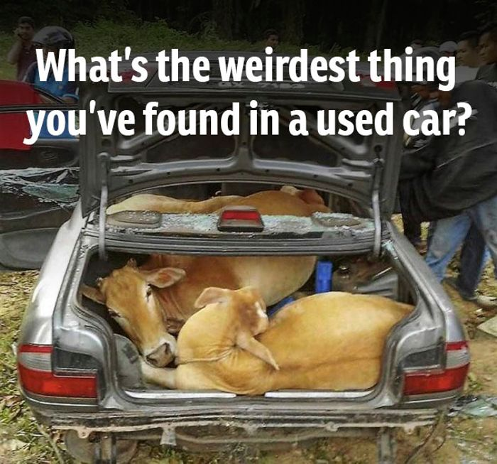 Ever Bought A Used Car And Found Something Really Weird In It We Want To Hear Your Stories Don T Forget Mention The