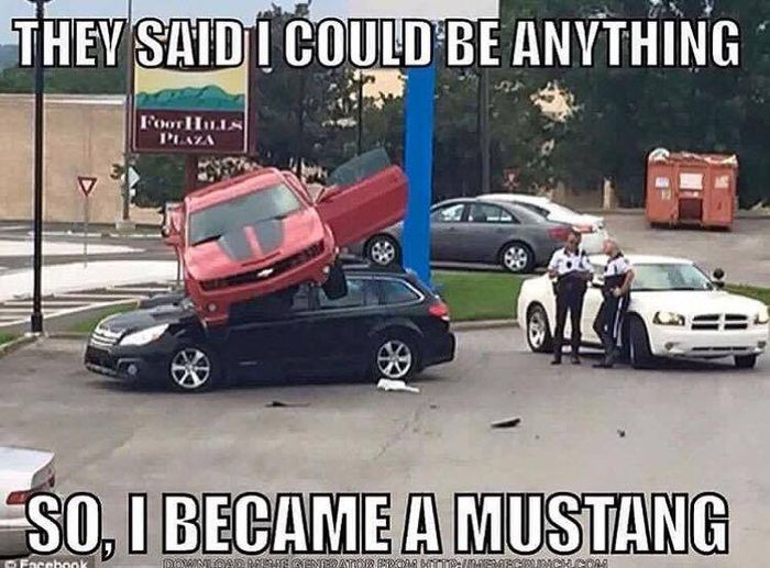 The 20 Funniest Mustang Memes So Far