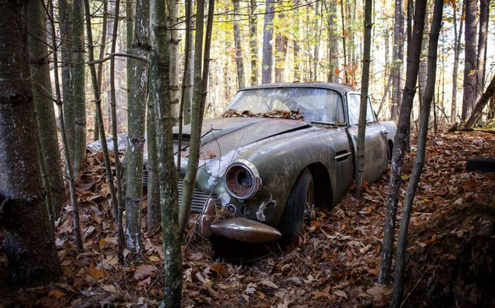 Someone Abandoned An Aston Martin DB Years Ago And Now Its For Sale - Old aston martin for sale