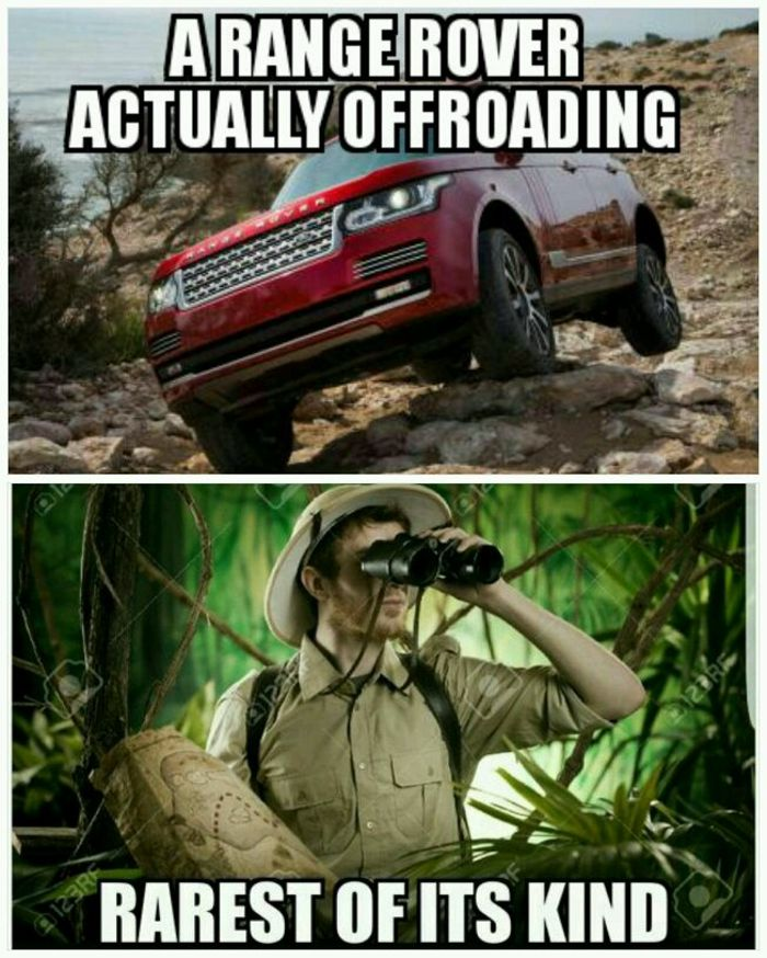 Daily Meme #299 Someone Actually Took A Range Rover Offroad