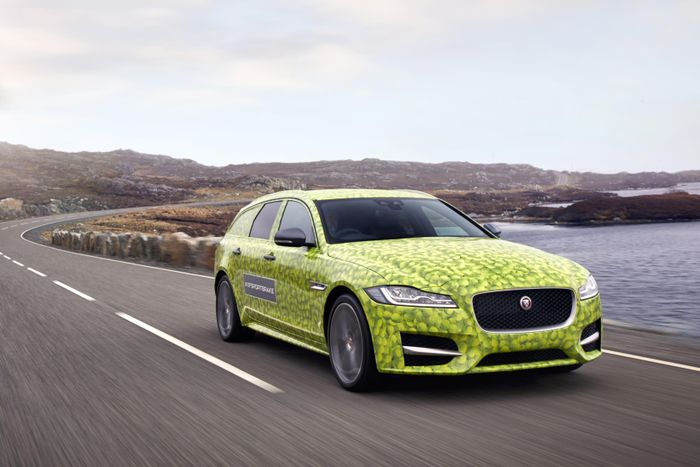 Jaguar brought to the tests of the new universal