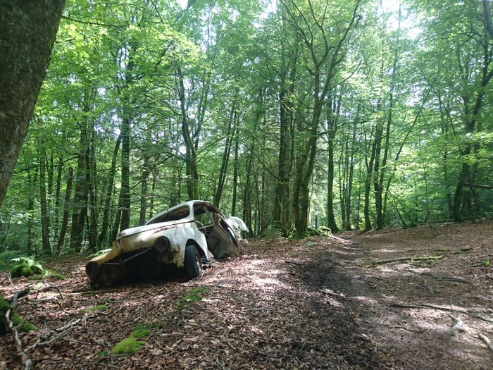 Image result for abandoned old car on dirt road pictures