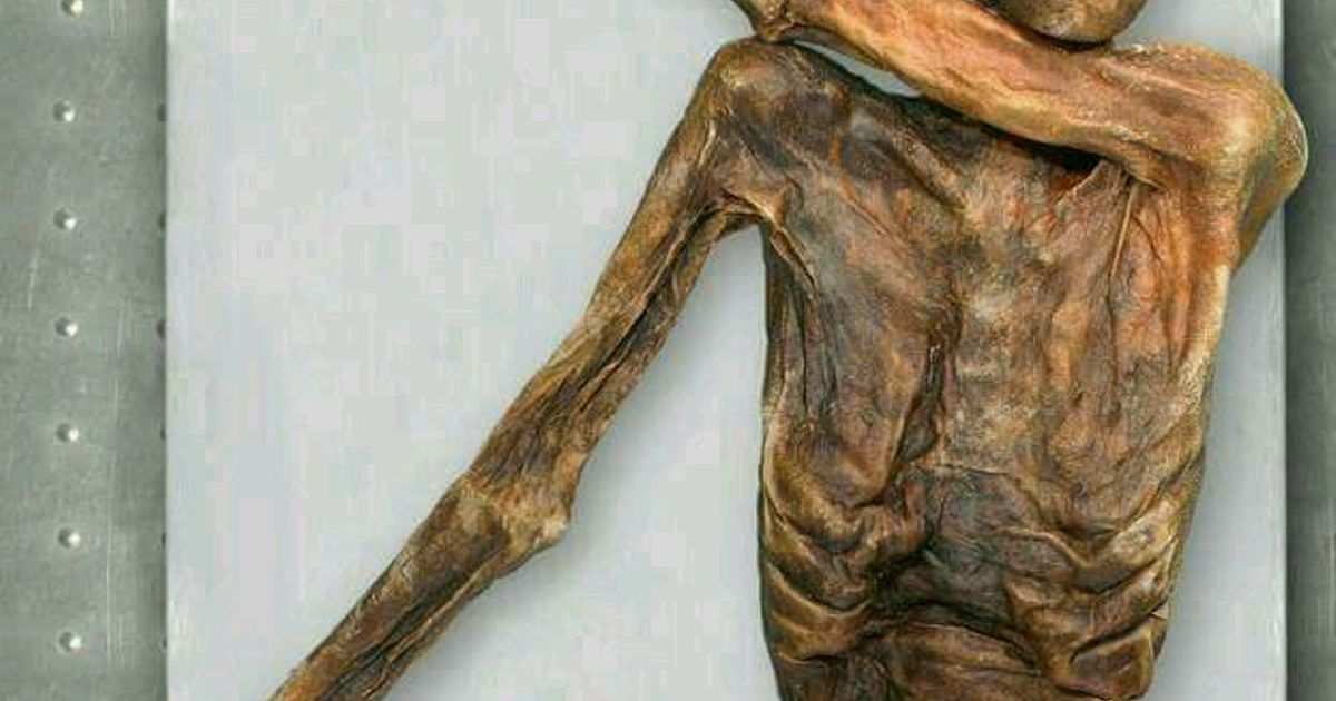 a paper on otzi the iceman