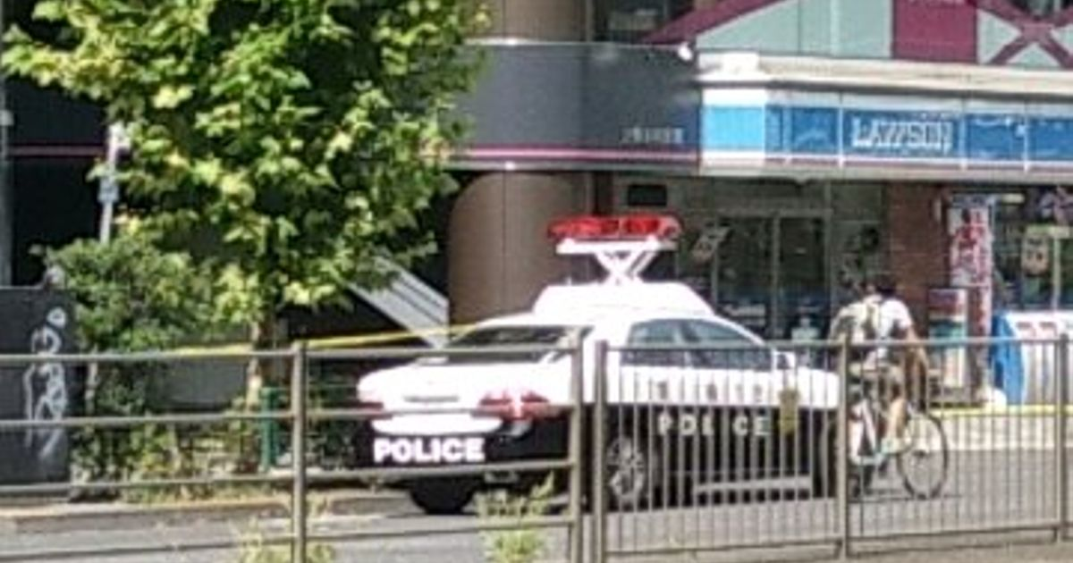 Fun fact about Japanese police cars; they can raise their ...