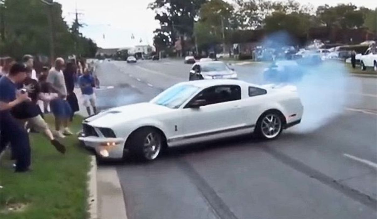 5 totally legit ways to survive a mustang encounter