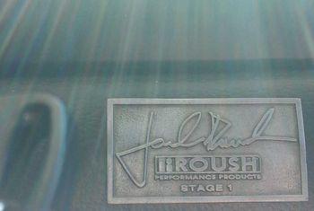Mustang Terminator Roush
